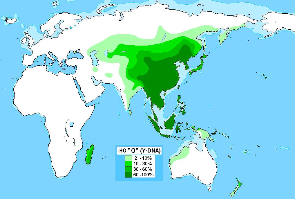 Haplogroup O-M175 - Turkcewiki org