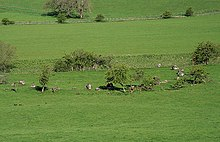 The Girdle Stanes stone circle - geograph.org.uk - 819407.jpg