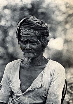 Sarawak; a native Land Dayak chief. Photograph. Wellcome V0037472.jpg