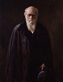 Three-quarter portrait of a senior Darwin dressed in black before a black background. His face and six-inch white beard are dramatically lit from the side. His eyes are shaded by his brows and look directly and thoughtfully at the viewer.