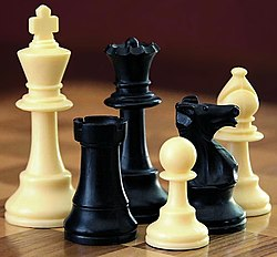 A selection of black and white chess pieces on a checkered surface.