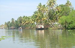 Kettuvallams line up in the Kuttanad region