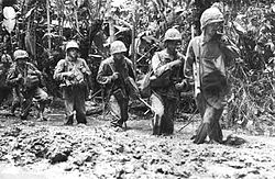 Marines standing in knee-high mud in the jungle.