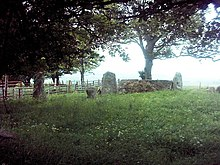 Old Keig Stone Circle - geograph.org.uk - 455962.jpg