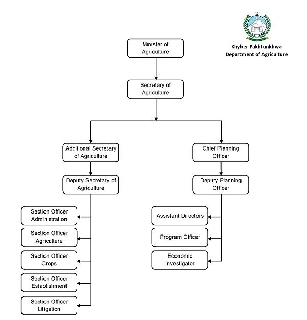 organizational chart of housekeeping department Hotel organisation chart for large hotel an organization requires a formal structure to carry out its mission and goals an easiest way to represent that structure is by an organization chart.