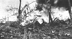 A Marine with a flamethrower lies prone in front of a burning bunker in the midst of devastated foliage.
