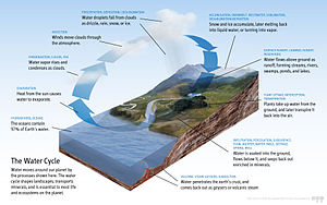 Water typically evaporates over water surfaces like oceans and is transported to land via the atmosphere. Precipitation in the form of snow, rain and more then brings it back to the surface. A system of rivers brings the water back to oceans and seas.