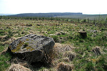 Whitcastles Stone Circle - geograph.org.uk - 2165337.jpg