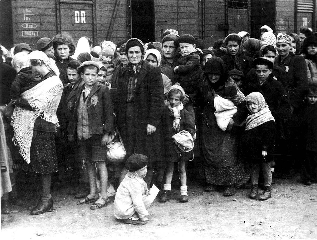 an overview of the homosexual survivors during the holocaust