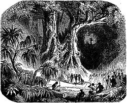 in an ominous and dark tropical forest, a person lays on the ground, surrounded by men with spears, as a crowd looks on