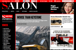 Salon screenshot - May 18, 2012.png