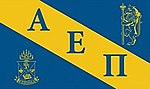 Alpha Epsilon Pi flag.jpg